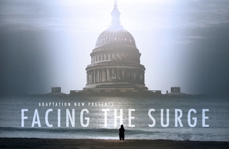 facing-the-surge